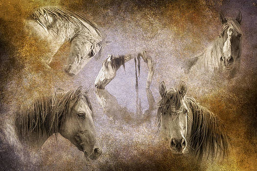 Horses I Have Known by Ron  McGinnis