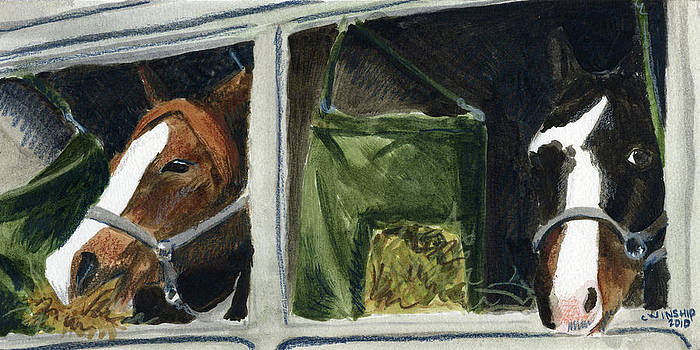Horses in a Trailer by Christine Winship
