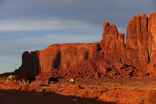 Horses of Monument Valley by Kim French