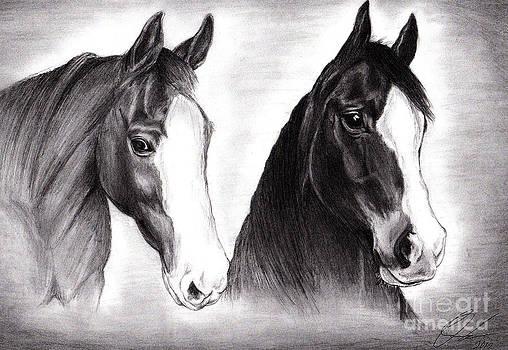 Horses by Omoro Rahim