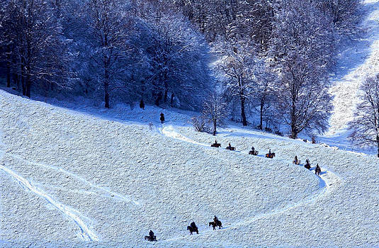 Horses on Snow - Painting by Mike Rampino