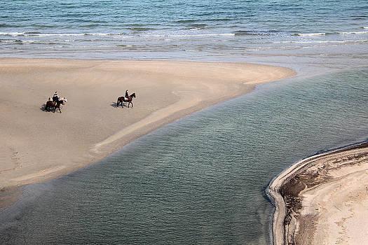 Horses on the beach by Andrea Bonavita
