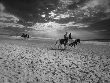 Horses on the beach BW by Nelson Watkins