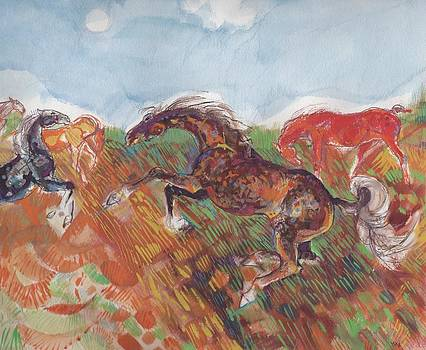 Horses run wild by Mary Armstrong