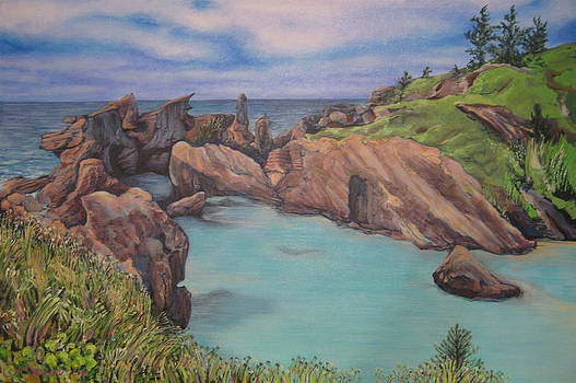 Jeff Seaberg - Horseshoe Bay Beach BERMUDA