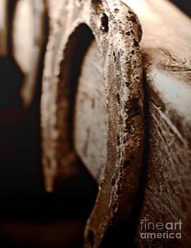 Horseshoe by Yanni Theodorou