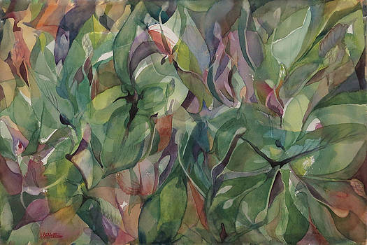 Hostas by Lynne Bolwell