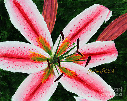 Barbara Griffin - Hot Lips Oriental Lily