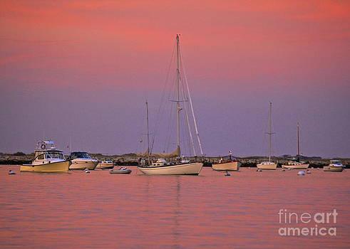 Amazing Jules - Hot Pink Sunset