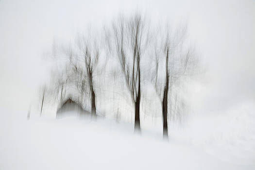 House I by Toma Bonciu