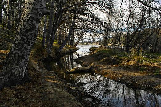 Randal Bruck - Houston Creek