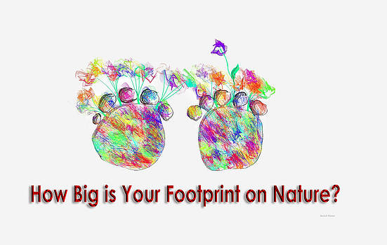 How Big Is Your Footprint On Nature by Angela A Stanton