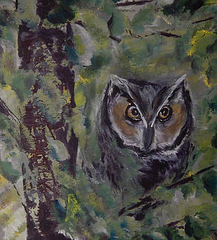 How do you Whoo by Shirley Watts