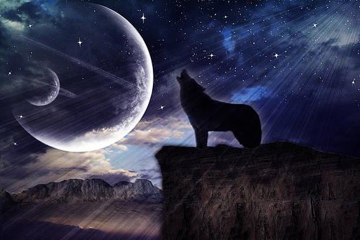 Regina  Williams  - Howling at the Moon 2
