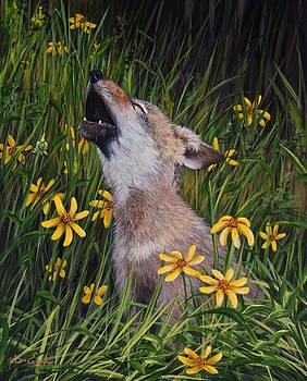Dee Carpenter - Howling Puppy