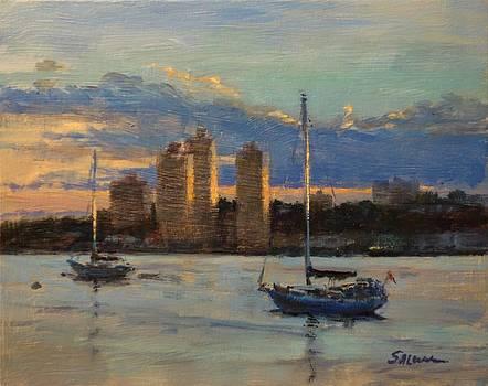 Hudson River Idyll by Peter Salwen