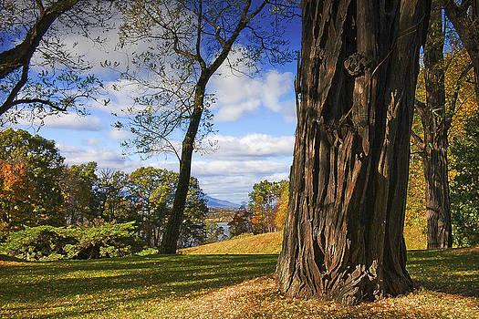 Hudson River View by David Clark