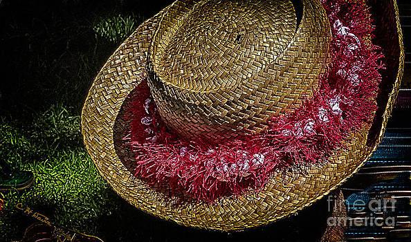 Charles Davis - Hula Hats 5
