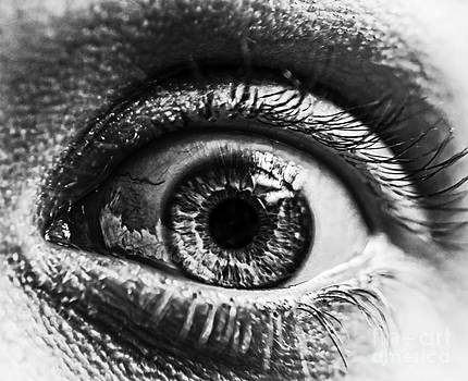 Human Eye by Jeremy Hall