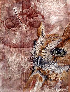 Human Owl  by Sarah Sutherland