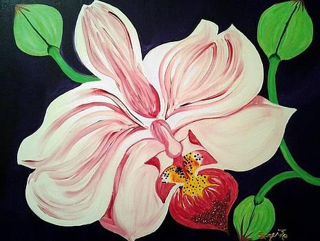 Humble Orchid by Edwina Sage Washington