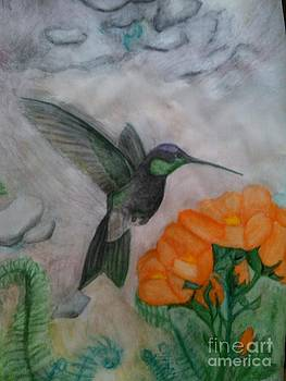 Humming Bird Away by Rebecca Christine Cardenas