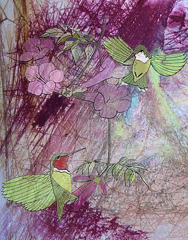 Donna Walsh - Humming Bird