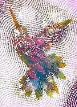 Hummingbird Above by Amy G Taylor