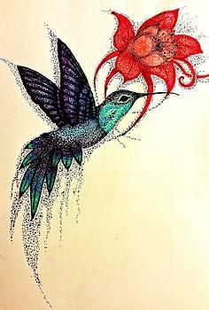 Hummingbird by Amanda Copenhaver
