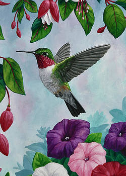 Crista Forest - Hummingbird Greeting Card 1