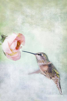 Susan Gary - Hummingbird on Green Vertical