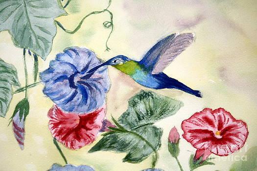 Donna Walsh - Hummmingbird among Morning Glories
