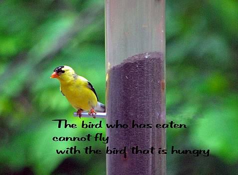 Gary Wonning - Hungry Bird