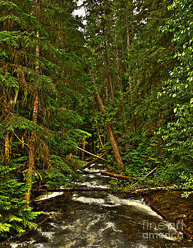 Hunt Creek Idaho by Sam Rosen