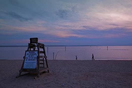 Regina  Williams  - Huntington Park Beach Sunset