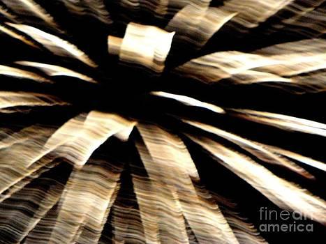 Huron Ohio Fireworks 8 by Jackie Bodnar