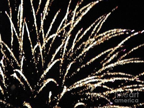 Huron Ohio Fireworks 9 by Jackie Bodnar