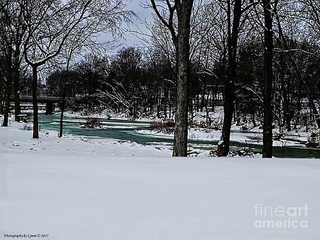 Gena Weiser - Huron River in Monroeville