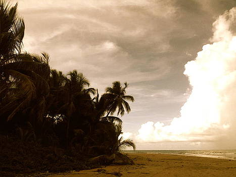 Hurricane Sandy by Danielle  Broussard