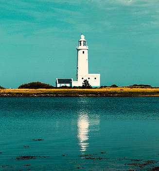 Hurst Point Lighthouse UK by Yvonne Gallagher