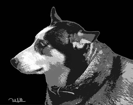 Husky Black and White Pop Art by Dale Hall