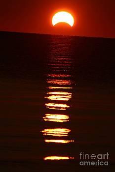 Hybrid Solar Eclipse by Megan Wilson