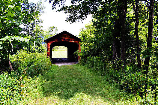 Hyde Hall Covered Bridge by Timothy Thornton