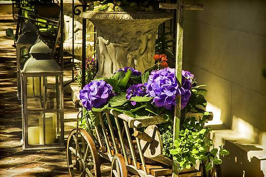 Bonnie Davidson - Hydrangea in a Cart