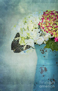 Susan Gary - Hydrangea with Blue Butterfly