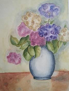 Hydrangeas by Lynette Clayton