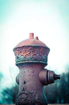 Hydrant by Off The Beaten Path Photography - Andrew Alexander