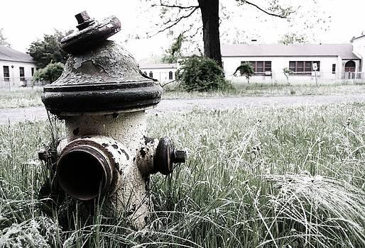 Robin Mahboeb - hydrant