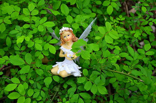 I am Content Right Here Woodland Fairies by Linda Rae Cuthbertson