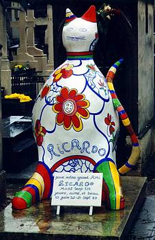 I am NOT a cat I am Ricardo Menon by Merridy Jeffery